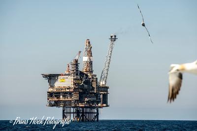 We pass a drilling rig. / We passeren een booreiland.