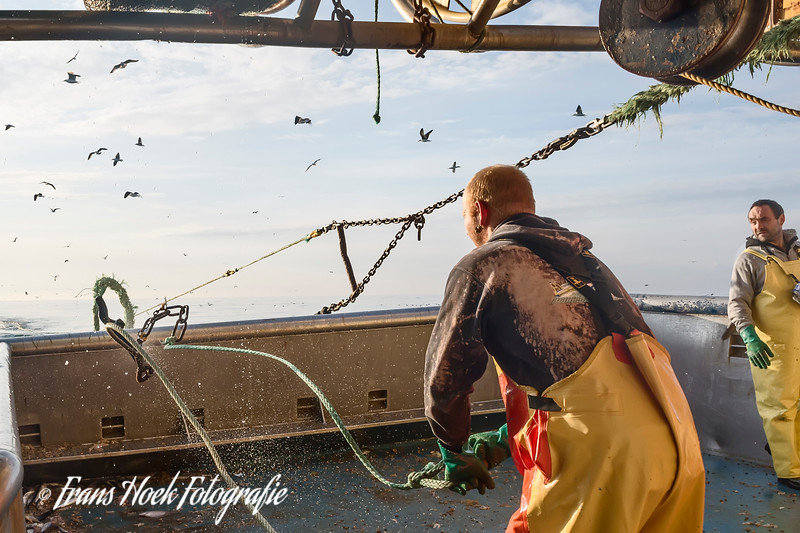 Vrijgeven van het net op de Stellendam-9. / Releasing the net on the fishing ship Stellendam-9