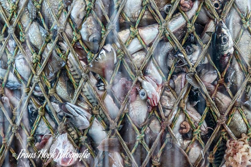 Close-up of the net. Close-up van het net.