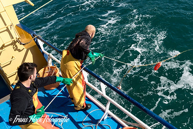 Retrieving the buoys. / Ophalen van de boeien.