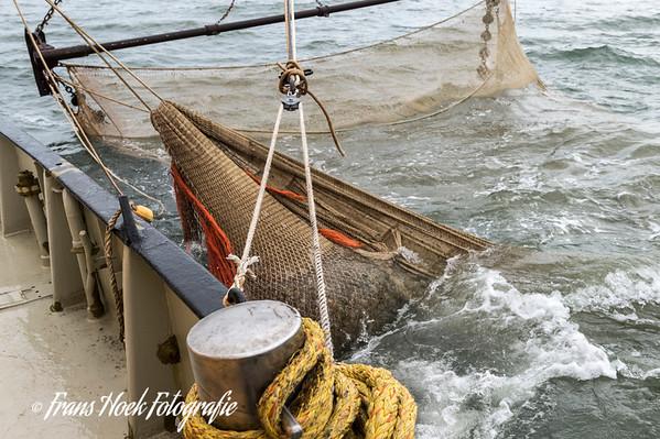The sack of the net is at the top of the surface. / De zak van het net komt boven aan de oppervlakte.