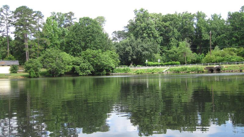 Pond near our house