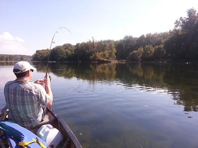 Potomac 2013