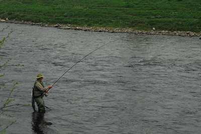 Richard Donkin playing a salmon at Carlogie, April.
