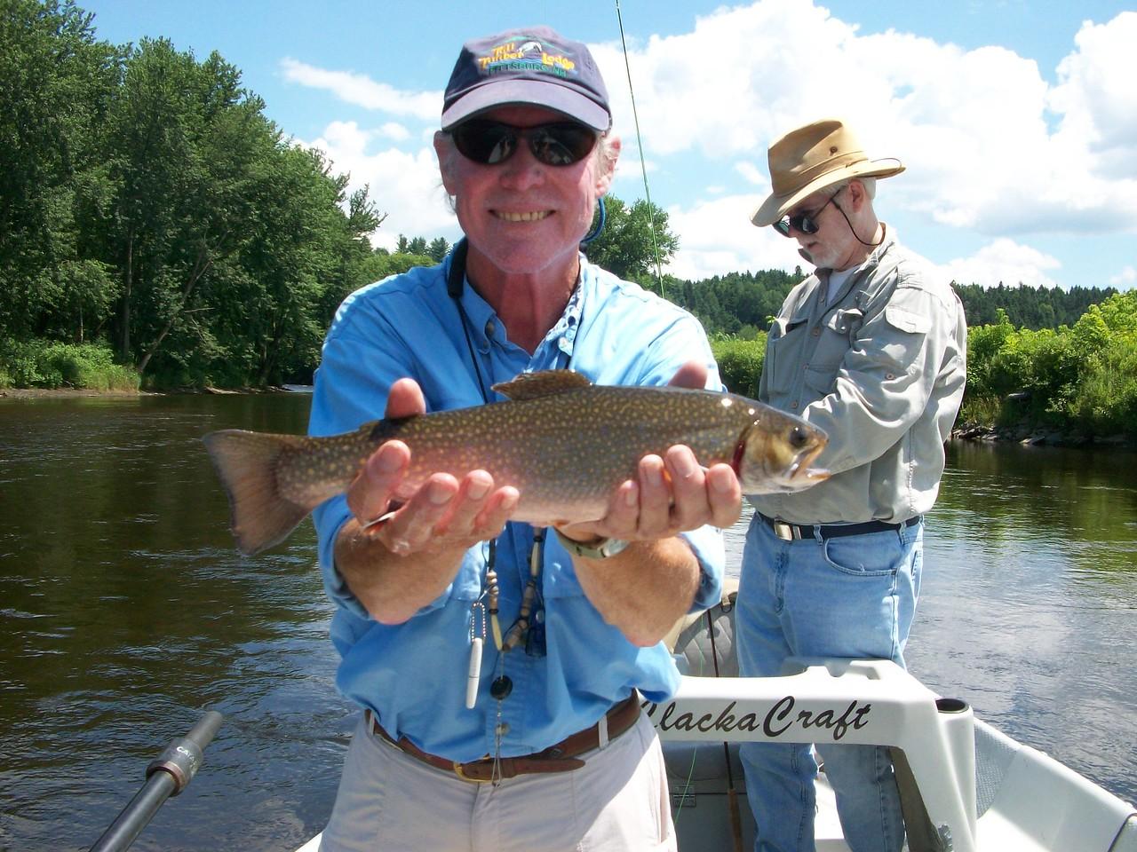 Connecticut River brook trout