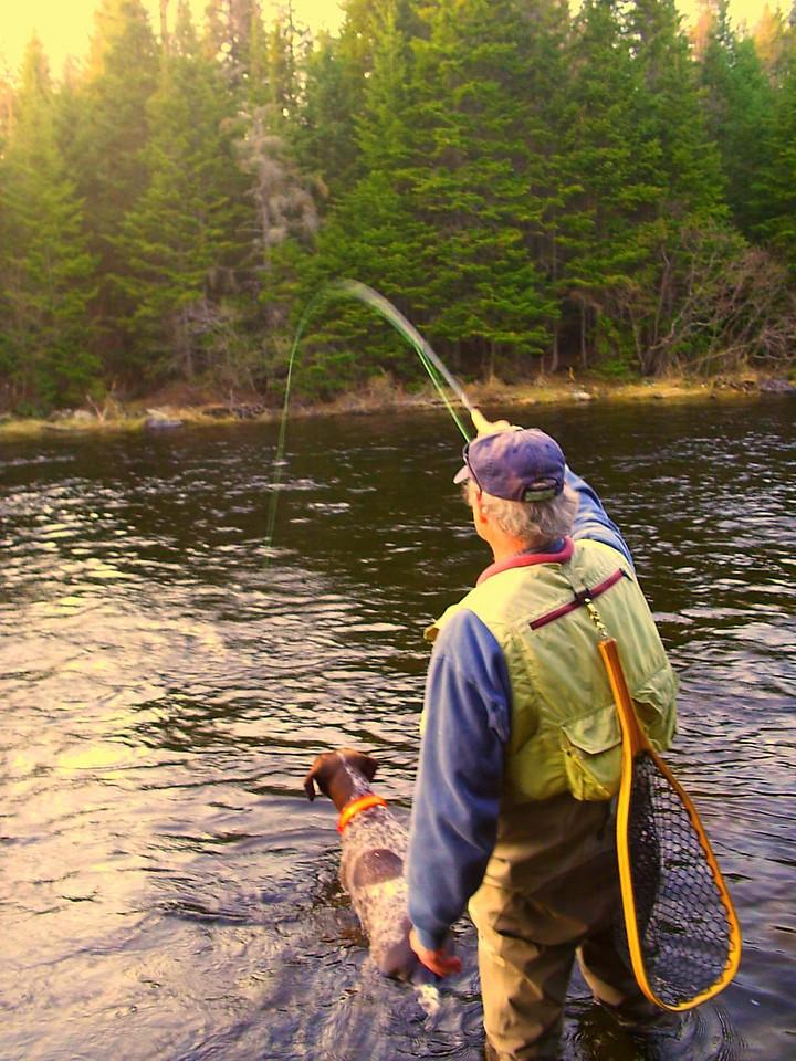 Salmon On! Spring salmon fishing.