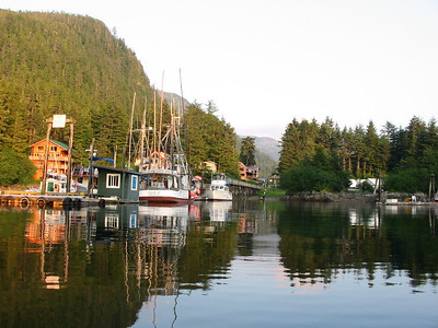 Elfin Cove in 2004