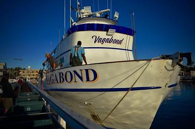 Vagabond 10 Day 2017 Dock Pics