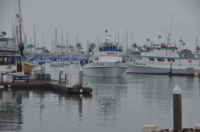 Vagabond - 5 day Dock Pics 9/10/16