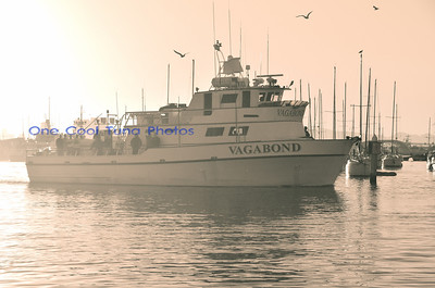 Vagabond Dock Oct 6th 2013