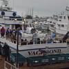 Vagabond Sportfishing - In Port San Diego -Point Loma Landing