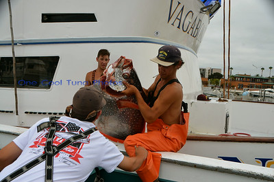 Vagabond Dock Pics 7/20/14