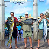 Jackpot winners from the 8 day trip. DoDo 1st, Yellowfin Tuna 2nd and Wahoo 3rd.. There was a 55lb Wahoo caught on the troll as well from , but not in the hunt for Jackpot.