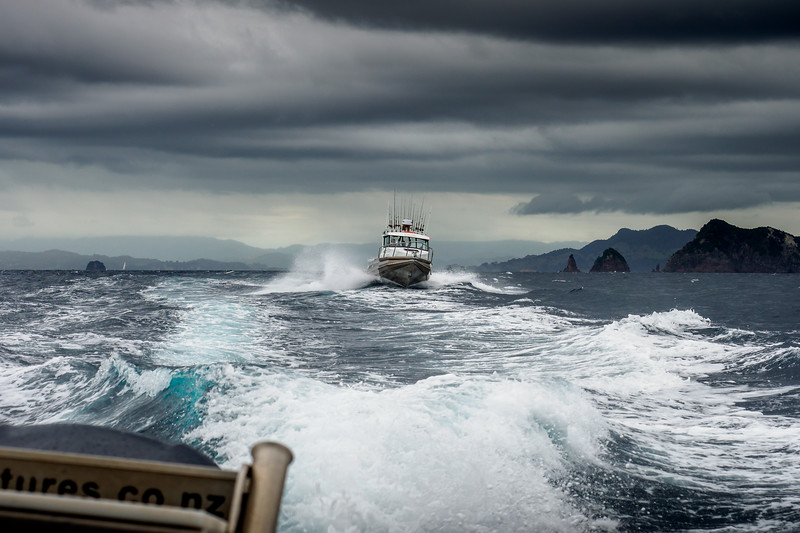 Heading out for a big day's fishing on New Zealand's Coromandel Peninsula with Epic Adventures