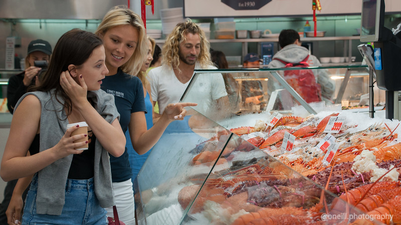 SHBT - Sydney Fish Markets