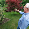 Bill McSheehy points out some of the flowers in the garden of Dr. Steven Manalan's house in Fitchburg. Manalan's garden will be one of the houses on the garden tour Saturday, June 23, 2018. SENTIENL & ENTERPRISE/JOHN LOVE