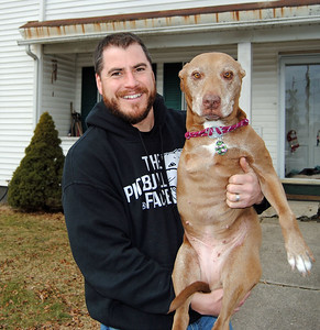 Fitchburg Line and Lilly, the hero pit bull