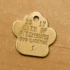 Zelda a one and half year old black lab mix was the dog that donated the most money to the Fitchburg dog park fundraiser  so she is now called the number one dog in Fitchburg and got the number one dog tag. This weill be Zelda's new tag. SENTINEL & ENTERPRISE/JOHN LOVE
