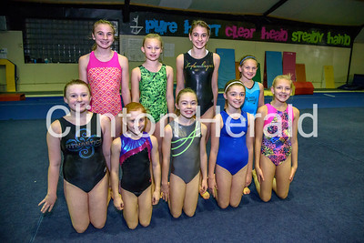 Fitnastics Gymnastics Center State Bound 12-8-16