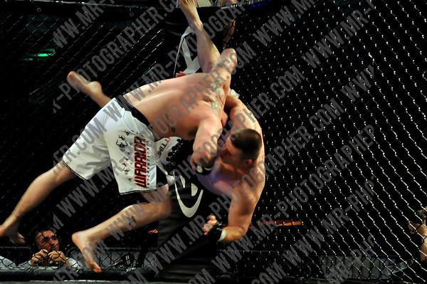 MMA & Boxing