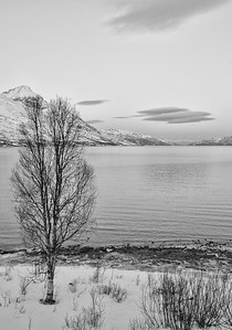 Tromso, Norway, January 2015