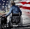 Man on wheelchair with dog concept USA veteran patriotism