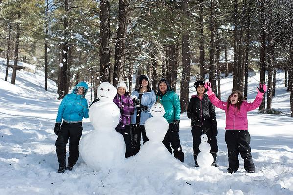 Flagstaff 2016 January