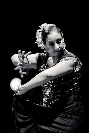 Flamenco Fall Fiesta 2013