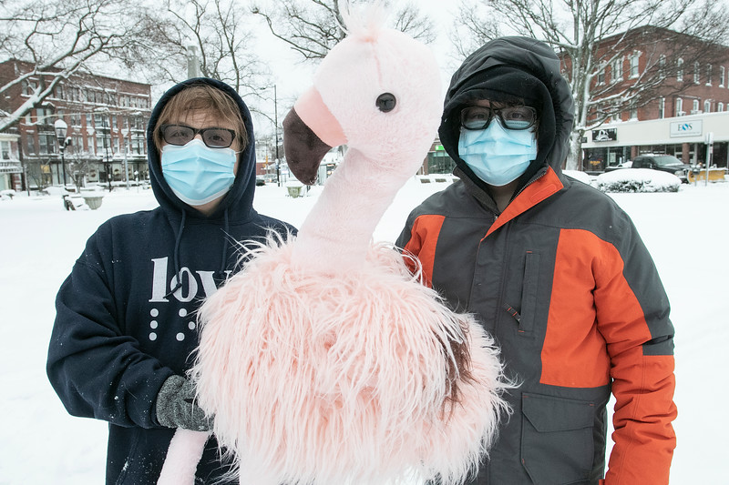 Holding a large stuffed pink flamingo during Flamingo Day on Monument Square in Leominster on February 2, 2021 is, from left, Tommy Joffrion, 14, and Sean Joffrion, 13. SENTINEL & ENTERPRISE/JOHN LOVE