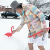 Leominster Mayor Dean Mazzarella was the master of ceremonies at the annual Flamingo Day in the City on February 2, 2021. Holding a vuvuzela he puts the Don Featherstone Flamingo in the snow on Monument Square. SENTINEL & ENTERPRISE/JOHN LOVE