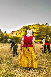 Moisson en Provence - I