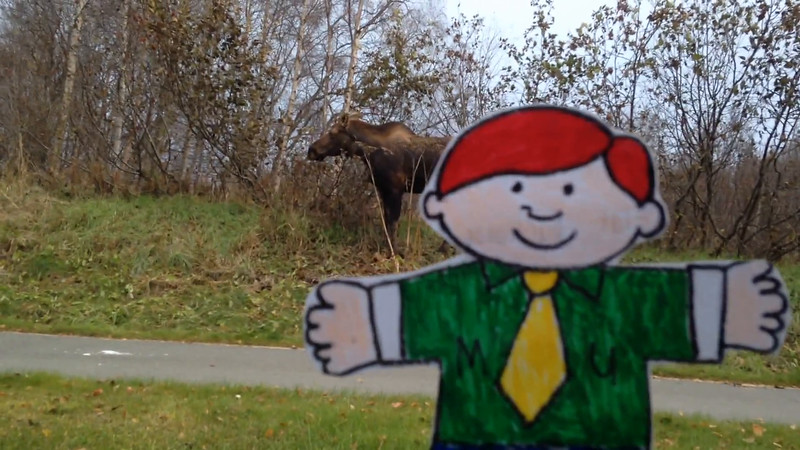 Flat Buchanan  meets his first moose.