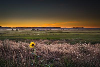 Missions East - Charlo, Montana