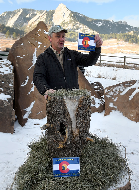 . Flatiron Freddy, Boulder\'s answer for Groundhog Day,  made his annual appearance at Chautauqua Park on Friday and did see his shadow. For more photos and a video, go to dailycamera.com. Cliff Grassmick  Photographer  February 2, 2018