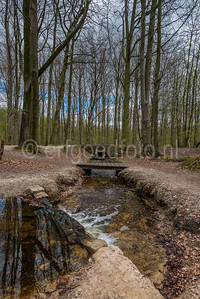 Kraggenburg - Waterloopbos