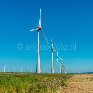 Urk - Windmolens