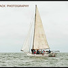2013 Deale Island Skipjack Race CITY OF CRISFIELD