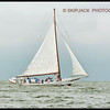 2013 Deale Island Skipjack Race IDA MAY 1st place