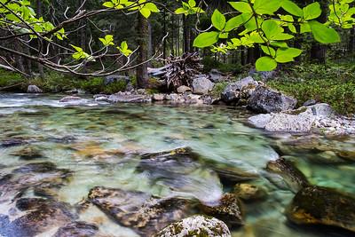 Canyon Creek_I66A1224