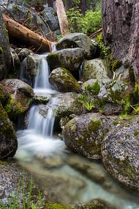 Canyon_Creek_I66A1386