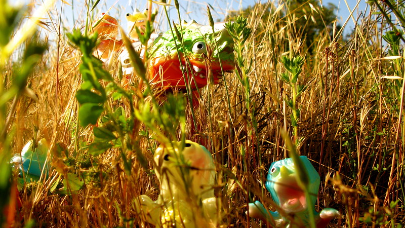AP Digital Photography: Concentration: Japanese Vinyl Toys in their Natural Environments