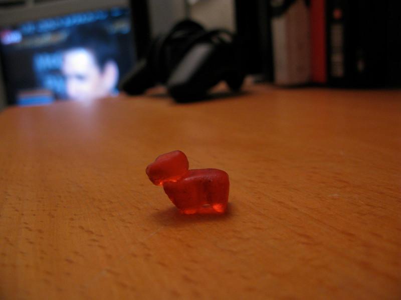 Gummy Dog