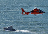 "Coast Guard boat and helicopter  Helicopters are noisy! Both helicopter and boat kept going north and south of the fallen car.  Update: our local paper's report: <a href=""http://www.pacificatribune.com/localnews/ci_8185262"">www.pacificatribune.com/localnews/ci_8185262</a>"