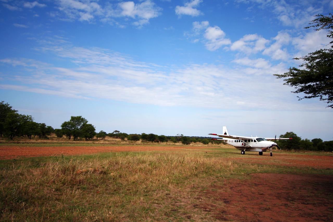 20121029-serengeti-flight-lobo (4)