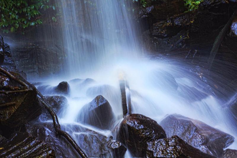 Curtis Falls, Tamborine Mountain_5484495887_o
