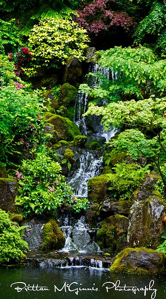 Japanese garden's waterfall