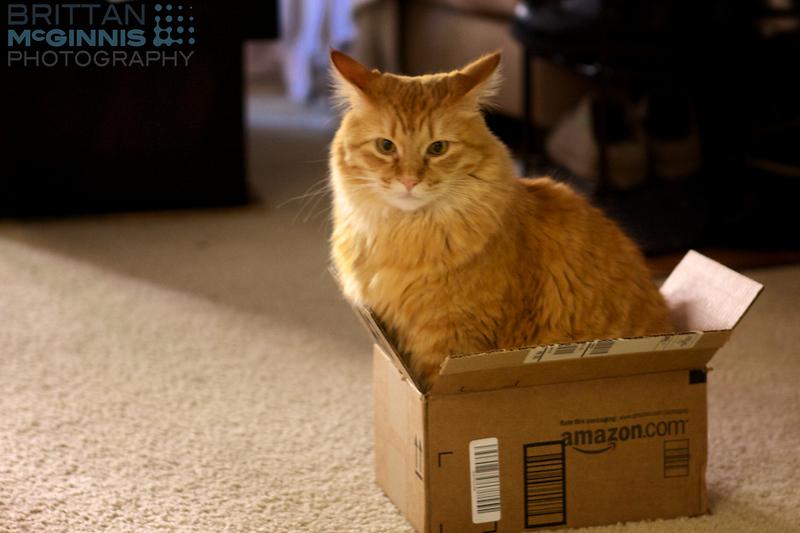 My Amazon shipment