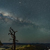 The Milky Way from Shepherds Lookout