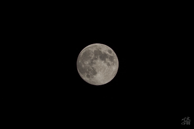 Luna Moon Photo (2012-08-01_2395)