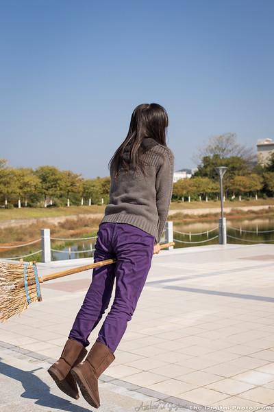 Flying Broomstick (2013-12-19_6221)
